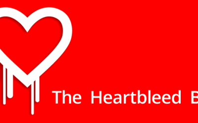 «The Heartbleed Bug»: el fallo de seguridad que sacude Internet.