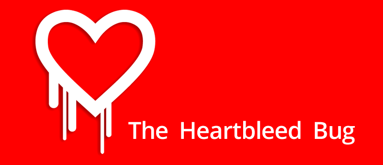 """The Heartbleed Bug"": el fallo de seguridad que sacude Internet."