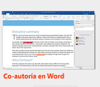 co-autoria en word